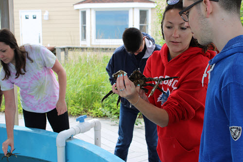 Coastal Steward Long Island